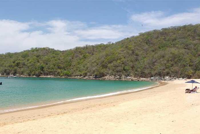 Cómo es el clima en la Bahía Maguey y el clima en la bahía el Órgano