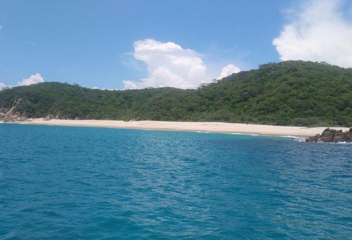 playa cacalutilla oaxaca mexico